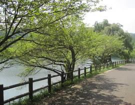 宇都宮市森林公園