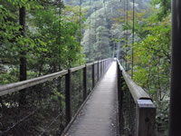 Mikaeri no Taki Falls