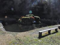 金精川鳟鱼鱼池