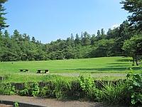 益子県立自然公園 益子の森