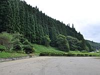 緑の交流館