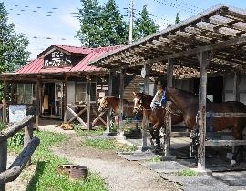 马头骑马场