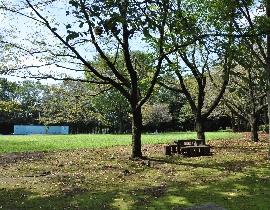 Kashinomori Park