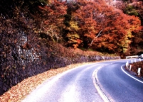第二伊吕波公路