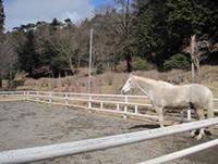 日光乗馬クラブ