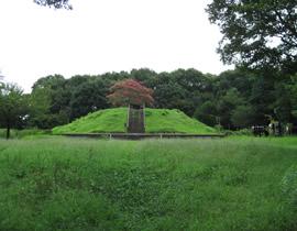 Le parc Tenpyô-no-oka