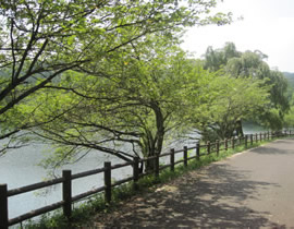 Utsunomiya City Forest Park
