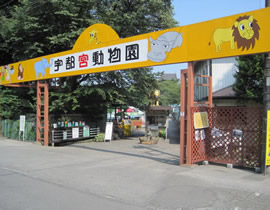 Le Jardin zoologique d'Utsunomiya