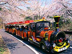 Mikamoyama Park