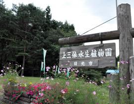 Kamimiyouri Aquatic Plant Park