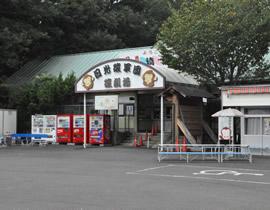 Nikko Monkey Corps