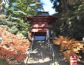Le Sanctuaire Kibata-jinja