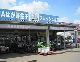 Hagano Mashiko Kanko Ichigo Danchi