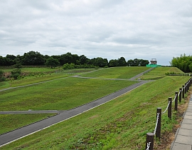 Shiba Zakura Park