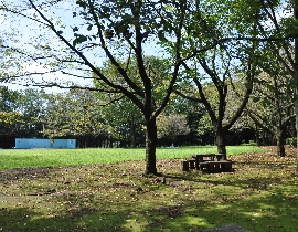 Le parc Kashi-no-Mori