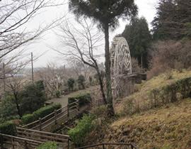 Suginami (Cedar Avenue) Park