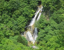Les chutes de Kirifuri (kirifuri : brume qui descend)